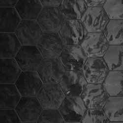 Hexagon Wall Black Swan